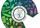 Liceo classico Pitagora di Crotone: Vittoria alle selezioni regionali delle Olimpiadi delle Scienze