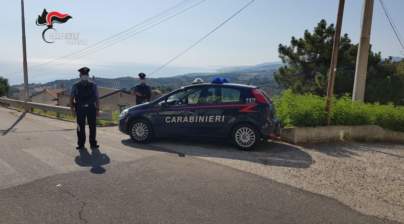 "Calopezzati (CS). ""Hashish"" e ""Marijuana"" nascosti in cucina: i carabinieri arrestano un quarantaquattrenne"