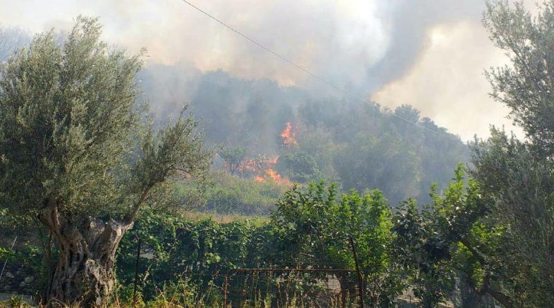 Incendio a Reggio, in azione task force guidata da Calabria Verde