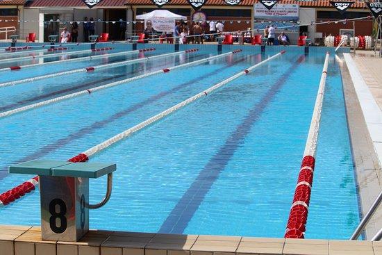 Crotone : pubblicato il bando di gara per la gestione della piscina olimpionica comunale